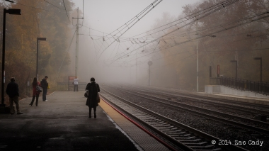 Fall Fog-10